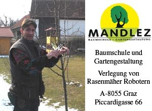 mandlez_logofuerwebseite34